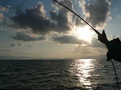 2008年10月15日(水)ウマズラの層を抜けれはチダイがたまに釣れています