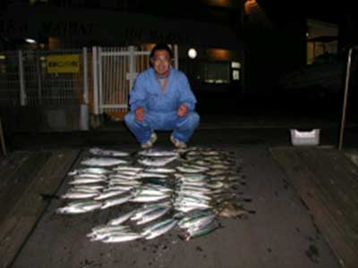 2009年2月26日(木)メダイやサバを釣られました
