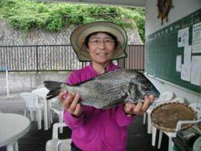 2009年6月9日(火)チヌの45cmを釣られました