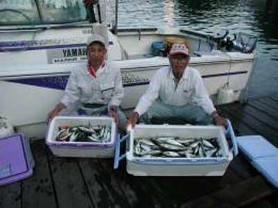 2009年6月21日(日)アジの40cmを釣られました