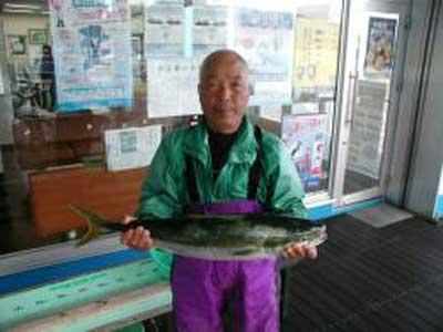 2009年10月30日(金)ハマチの77cmを釣られました
