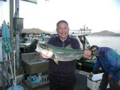 2009年11月6日(金)メジロの76cmを釣られました
