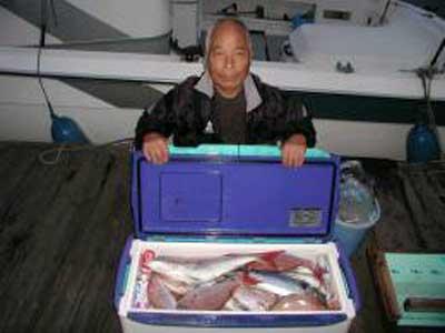 2009年11月24日(火)鯛の55cmを釣られました