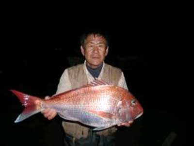 2010年4月10日(土)鯛の64.5cmを釣られました