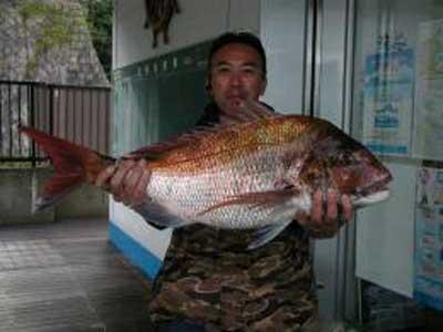 2010年4月26日(月)マダイの74cmを釣られました