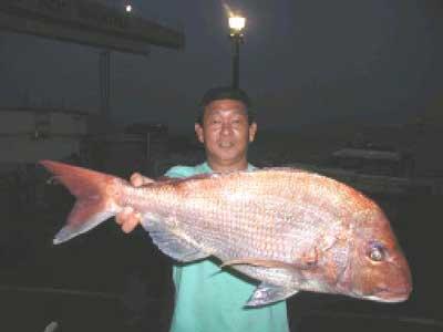 2010年6月1日(火)鯛の78.5cmを釣られました