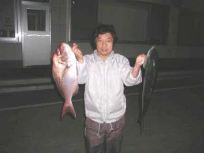 2010年6月7日(月)鯛やハマチを釣られました