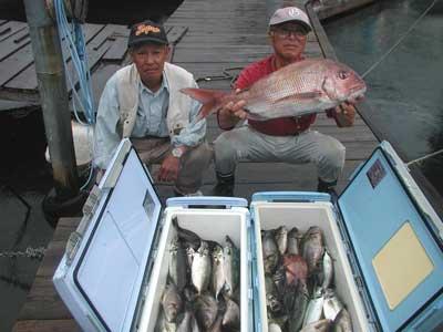 2010年7月11日(日)若狭湾で鯛やイサキを釣られました