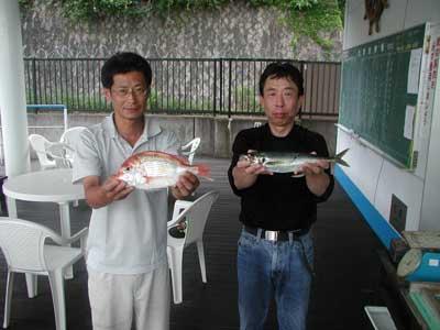 2010年7月19日(月)若狭湾で鯵やチダイを釣られました