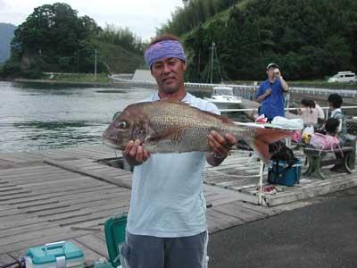 2010年9月12日(日)若狭湾で鯛の70.5cmを釣られました