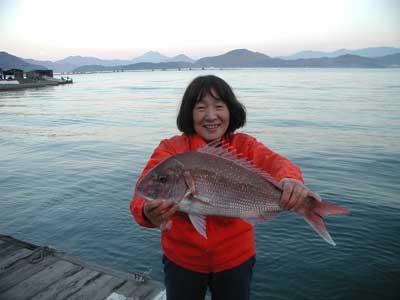 2010年11月21日(日)若狭湾で鯛の60cmを釣られました