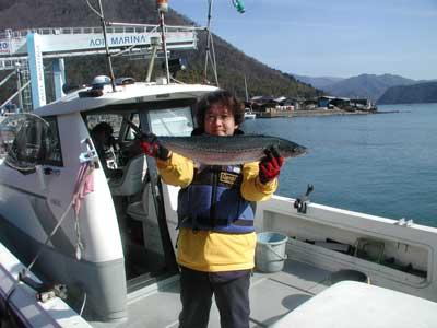 2011年2月23日(水)若狭湾でサワラの80cmを釣られました