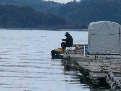 2009年1月25日(日)舞鶴は吉田の筏で釣りを楽しまれている様子(2枚目)