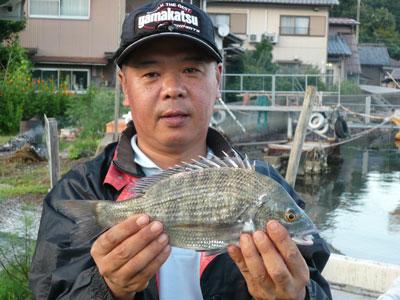 2008年9月9日(火)舞鶴は吉田の筏で上がった40cmサイズのチヌです
