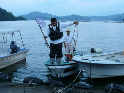 2008年9月14日(日)舞鶴は吉田の筏より夕刻に帰港です