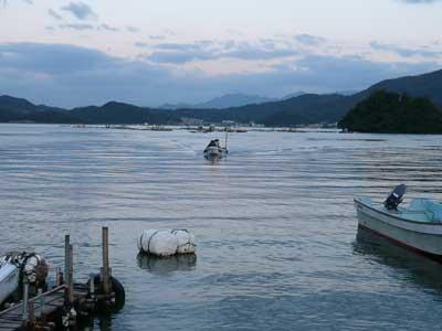2008年10月1日(水)舞鶴は吉田の筏より夕刻に帰港です