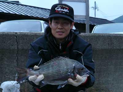 2008年10月26日(日)丸々と良型のチヌ42cmを釣り上げられた覚前様です