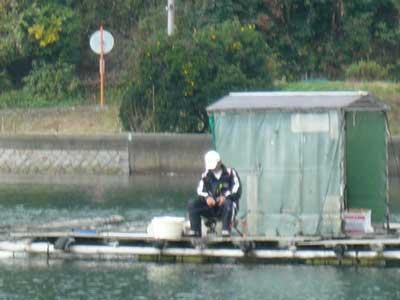 2008年11月9日(日)筏より向かって北側のお客さん1枚目です