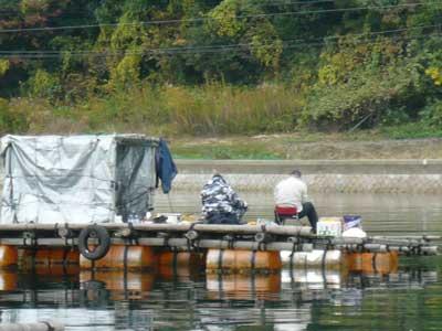 2008年11月9日(日)筏より向かって北側のお客さん3枚目です