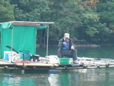 081116yoshida07.jpg2008年11月9日(日)筏より向かって北側のお客さんです