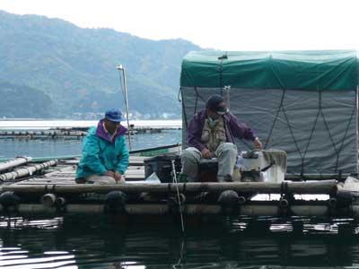 2008年11月9日(日)よしみ船頭さんがお客さんの釣りを見学されていました