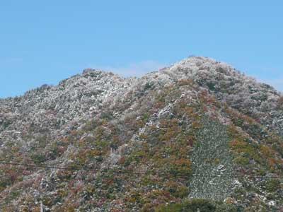 2008年11月20日(木)吉田の山も雪化粧となりました
