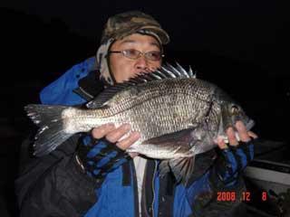 2008年12月8日(月)國丸渡船のお客さんは年無し55cmのチヌです