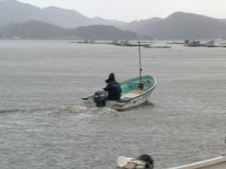 2008年12月14日(日)よしみ渡船さんは雨の中を迎えに行かれました