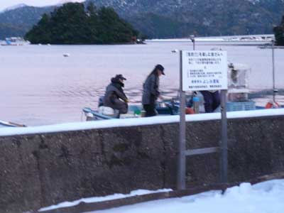 2009年1月12日(月)國丸渡船さんが吉田の筏より一番早く帰港です