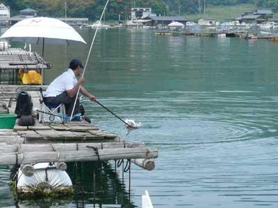2009年5月10日(日)お客さんが丁度魚を釣り上げている最中の写真を撮影する事が出来ました