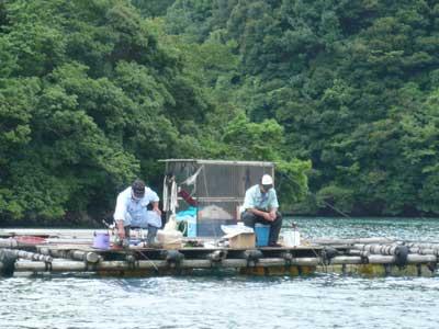 2009年7月19日(日)弁天島の方には2名の方が集中されています