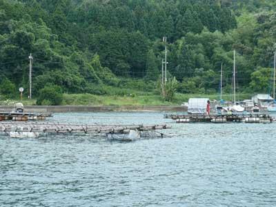 2009年7月19日(日)ヨットハーバー側の方にも2組の方が釣りをされています