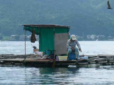 2009年9月13日(日)弁天島の筏におられる方は竿先に集中されていました