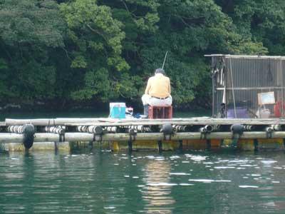 2009年9月13日(日)弁天島の手前の筏におられる方はチヌ釣りでは無い竿のご様子です