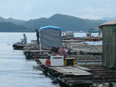 2009年9月13日(日)筏毎にも1名づつの釣り客が竿先に集中されています