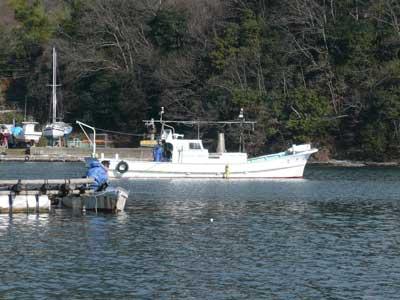 2010年1月17日(日)ナマコ引きの船がロープを引っ張り行き来しています