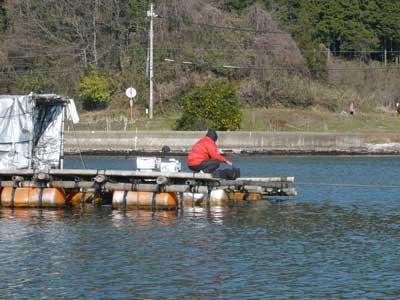 2010年1月17日(日)釣り客も様子を見ながら釣りをされています