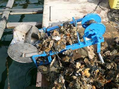2010年2月28日(日)牡蠣を引き揚げるウィンチを使って見ました