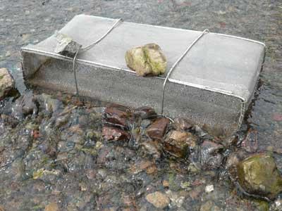 2010年3月13日(土)イサザ漁の仕掛けは単純なカゴ型式で実施されています