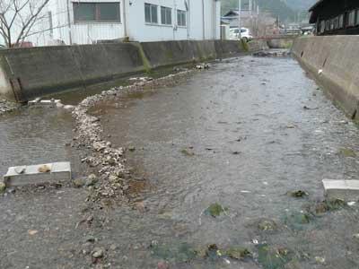 2010年3月13日(土)河川付近には幾つものイサザの仕掛けを設置されています