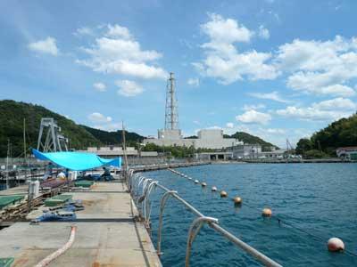 2010年9月6日(月)宮津の海洋センターで岩牡蠣の種付けを実施する事になりました