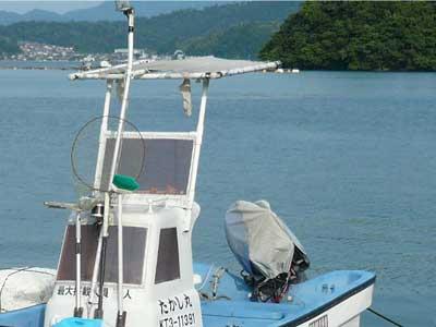 2010年11月23日(火)船のテントの上に鳥が停まってフンを落とします