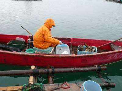 2011年1月9日(日)釣果の気配で振り向くとチヌ竿がグニャーと曲がりくねっていました
